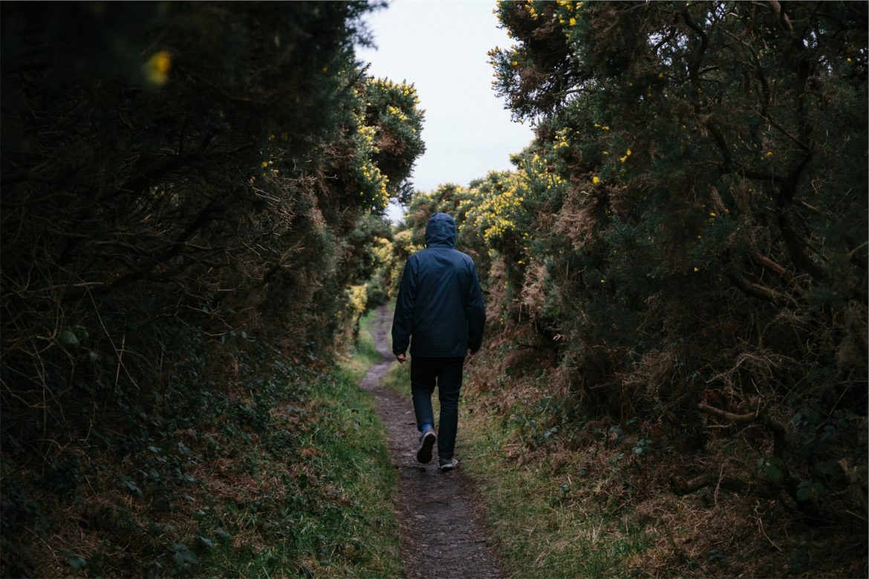 Promenade dans la nature